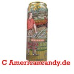 Arizona Arnold Palmer Half Sweet Tea & Half Lemonade PEACH 680ml