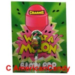 Charms Blow Pop What A Melon Lollipop