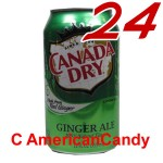 24x Canada Dry Ginger Ale incl. Pfand