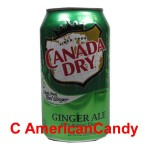 Canada Dry Ginger Ale incl. Pfand