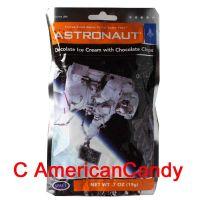 Astronaut Ice Cream Chocolate Ice Chocolate Chips