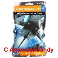 Astronaut Mint Chocolate Chip Ice Cream