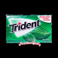 Trident Spearmint 14er